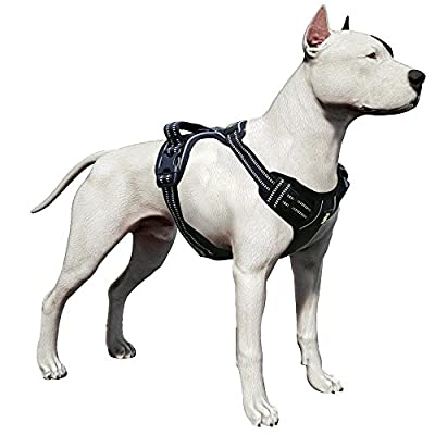 LovinPet Front Range Dog Harness No-Pull Adjustable Pet Vest 3M Reflective For Dogs Easy Control Walking Outdoor Training Sports Adventure