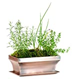 H Potter Rectangular Planter with Antique Copper Finish, Indoor Outdoor Garden Pot & Plant Window Box for Succulent Flowers & More, 12″ x 6″ x 6″, GAR554 Review