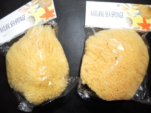 "2 pack of 6""-7"" Natural Ocean Real Sea Sponge by Touch Me"