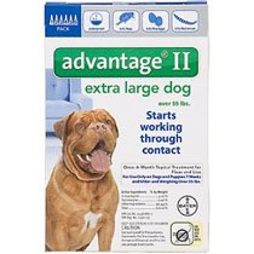 Bayer Advantage II Topical Flea Treatment for Dogs over 55 Lbs (6 Applications) by Bayer (Image #1)