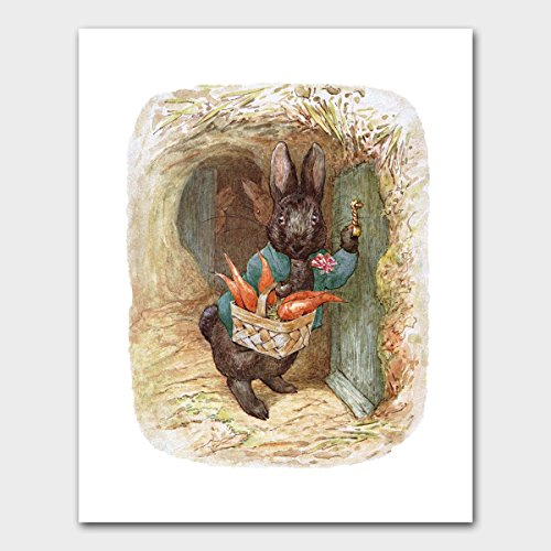 Baby  (Peter Cottontail Author)