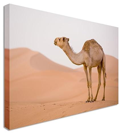 Grande Lonely camello desierto cuadros en lienzo pared Art Prints 12 ...