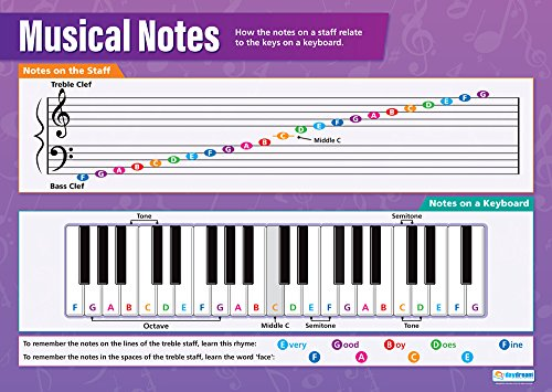 (Musical Notes | Music Posters | Laminated Gloss Paper measuring 33