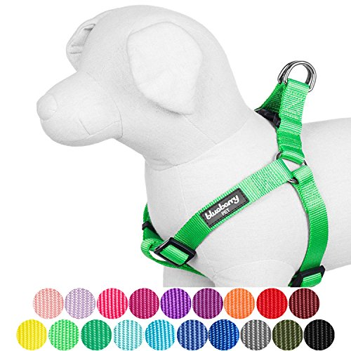 "Blueberry Pet 19 Colors Step-in Classic Dog Harness, Chest Girth 26"" - 39"", Neon Green, Large, Adjustable Harnesses for Dogs"