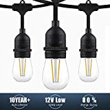 Yeaheo Commercial Pro - 48ft Outdoor String Lights Waterproof -16 LED 2W Edison Bulbs - 15 E26 Sockets for Gazebo Garden Backyard Weddings(Safety 12V Low Voltage Level)