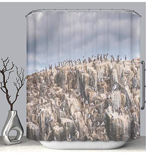 BEICICI Color Shower Curtain Liner Anti-Mildew Antibacterial Farne Island Seabird Colony Custom Shower Curtain Bathtub Bathroom Accessories 54W×78Linch