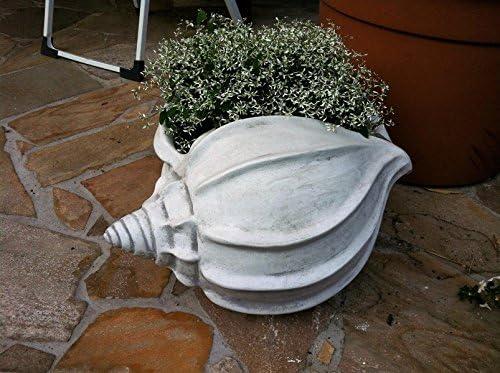 2 x Macetero caracola Macetero Maceta para plantas: Amazon.es: Jardín