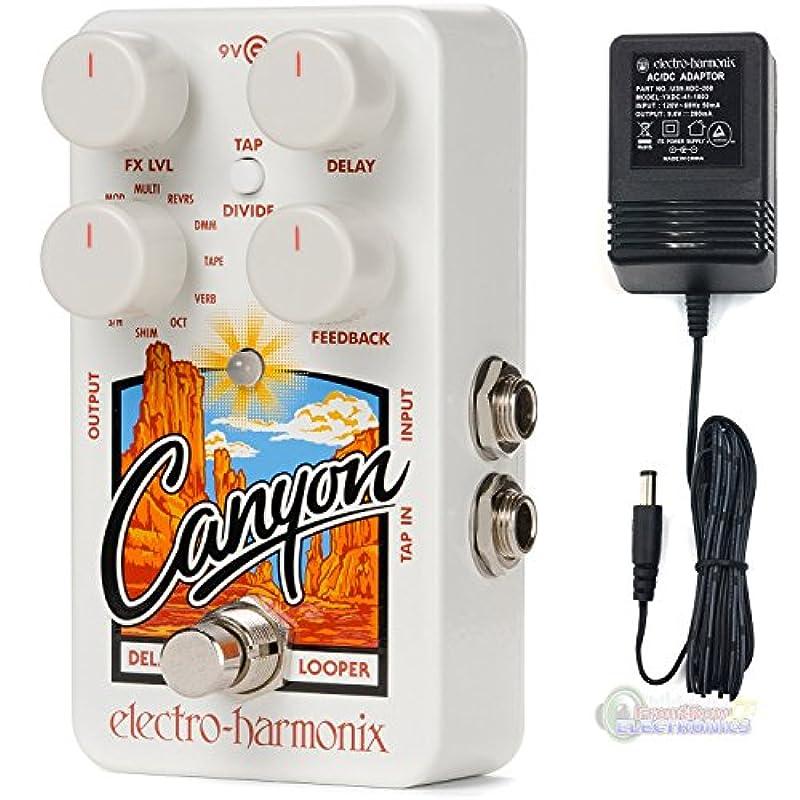 ELECTRO-HARMONIX 이펙터 딜레이 / 루퍼 Canyon