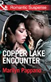 Front cover for the book Copper Lake Encounter by Marilyn Pappano