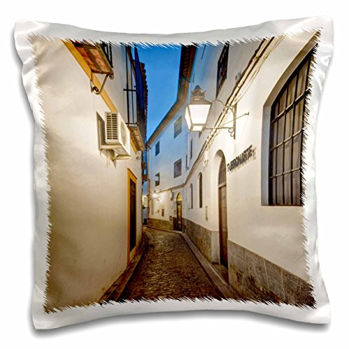 3dRose Medieval Alleyway, Cordoba, Andalucia, Spain - EU27 RTI0011 - Rob Tilley - Pillow Case, 16 by 16-inch (pc_139123_1) by 3dRose