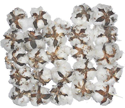 Natural Cotton Balls 20 Pieces
