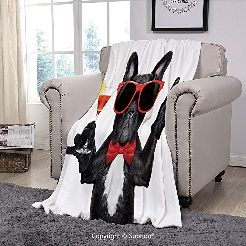 Throw Blanket/Super Soft Fuzzy Light Blanket,Funny,French Bulldog Holding Martini Cocktail Ready for The Party Nightlife Joy Print,Black Red White(51