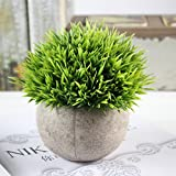 RONSHIN Simulate Potted Plant Pretty Microlandschaft Home Office Hotel Decor (needle grass)
