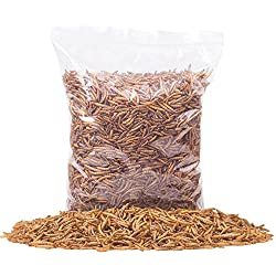 Golden Grubs Dried Mealworm 100% All-Natural High-Protein Chicken, Duck, Wide Bird (5lbs)