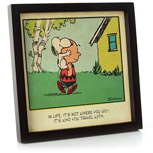 Peanuts Hallmark Friendship Framed -
