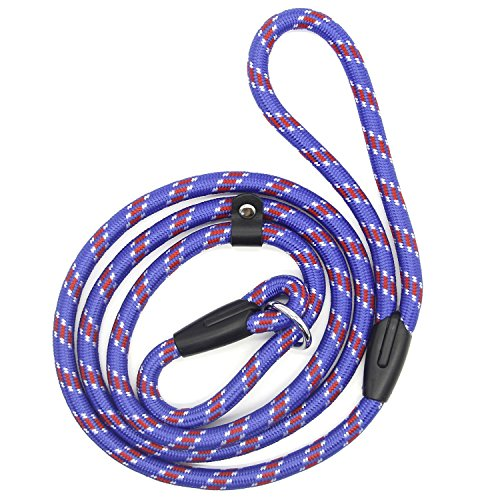 Coolrunner Pet Dog Slip Training Leash Lead Collar (Blue) for Dogs 10-80lbs 4foot/1.2m Long
