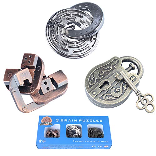 Brain Teaser Metal Puzzle 3D Unlock Interlocking Puzzle Adults Child Educational Toy