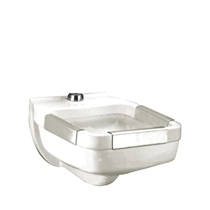 Merveilleux American Standard 9512.013.020 Clinic Service Sink With Blow Out Flushing  Rim Action And 1