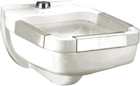 American Standard 9512 013 020 Clinic Service Sink With
