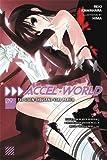 Accel World, Vol. 9: The Seven-Thousand-Year Prayer