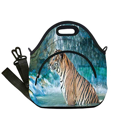 Tiger Lightweight Neoprene Lunch Bag,Feline Beast in Pond Searching for Prey Sumatra Indonesia Scenes Decorative for Kids Nurse Teacher Outdoor,With Pocket(12.6''L x 6.3''W x 12.6''H)
