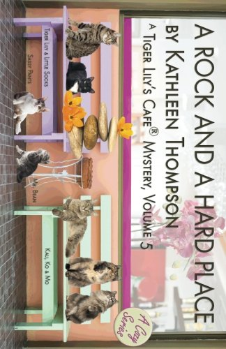 a-rock-and-a-hard-place-a-tiger-lilys-cafe-mystery-volume-5