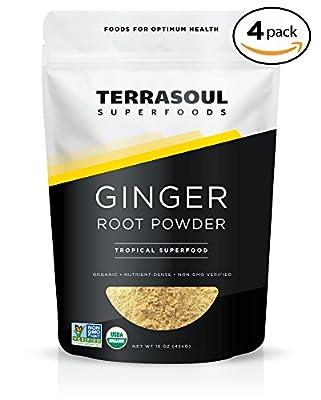 Terrasoul Superfoods Organic Ginger Powder