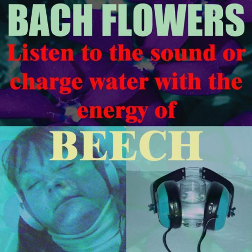 Beech - (Listen to the sound or charge water with the energy of Beech ()