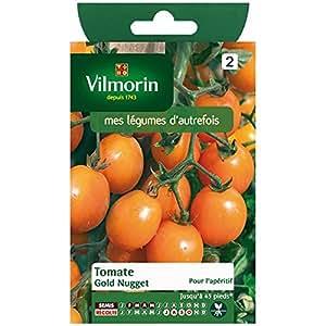 Vilmorin - Tomato Gold Nugget