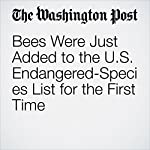 Bees Were Just Added to the U.S. Endangered-Species List for the First Time | Amy B Wang