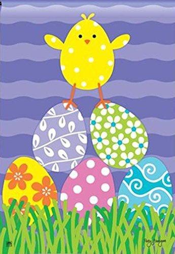 (BreezeArt Chicks Rule Garden Flag #31090 by Breeze Art)