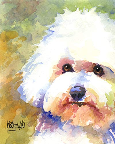 Bichon Frise Art Print | Bichon Frise Gifts | From Original Watercolor Painting by Ron Krajewski | Hand Signed in 8x10