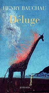 Déluge : roman