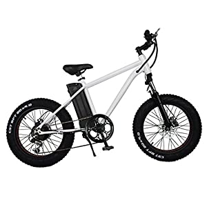 New Cruiser 20 Inch 250 300W Motor 6 Speed Electric Fat Tire Off Road Mountain Bike Bicycle E Bike With 36V/10A Lithium Battery