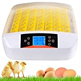 Kemanner Automatic 48 Digital Clear Egg Incubator Hatcher Egg Turning Temperature Control 80W