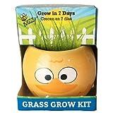 Buzzy - Ceramic Duck Grass Grow Kit
