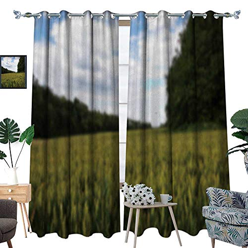 fengruihome Thermal Insulated Blackout Curtain Light Blocking Curtains for Living Room/Bedroom Wheat Grow in A Fiel in The Chilterns ENGL Out Focus 96.5