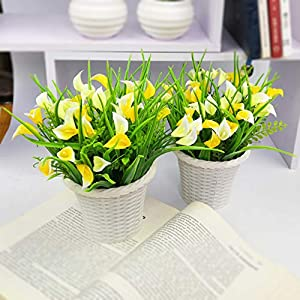 GreenyLife Artificial Plant Fake Flowers with Vases for DIY Mini Lifelike Plastic Calla Fresh Flower Wedding Party Home Décor Yellow & White, 2 Set 116
