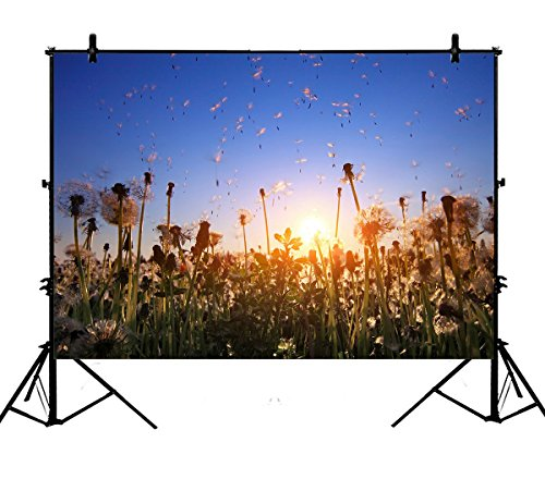 7x5ft Blue Sky Scenery Backdrops, Fluffy Dandelions with Flying Seeds at Sunset Polyester Photography Backdrop Studio Prop Photo Background