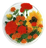 Peggy Karr Handcrafted Art Glass Autumn Garden Plate, Round, 11-Inch