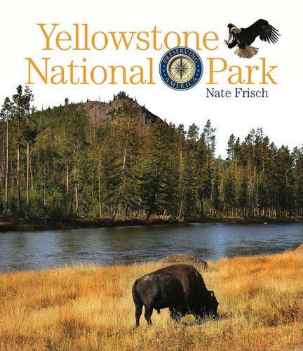 Download Preserving America: Yellowstone National Park pdf