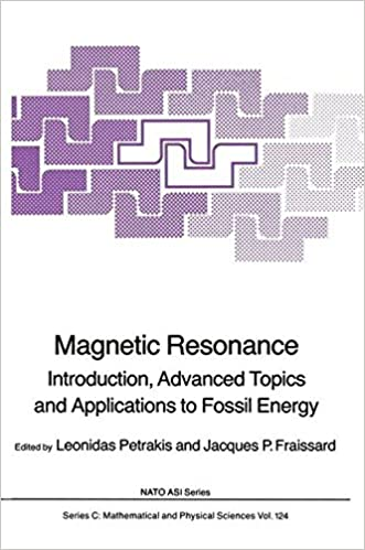 Book Magnetic Resonance: Introduction, Advanced Topics and Applications to Fossil Energy (Nato Science Series C:)