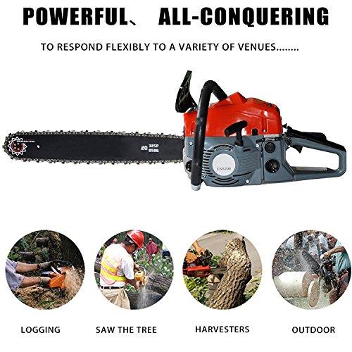 Lantusi Rancher 20-Inch 52CC 2 Strokes Gas Powered Chain Saw 3.0 HP Tree Chainsaw (52cc)