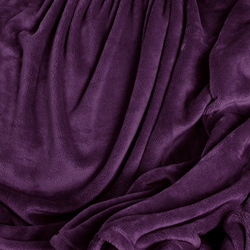 Cozy Plush VelvetLoft Baby Blanket, Imperial Purple
