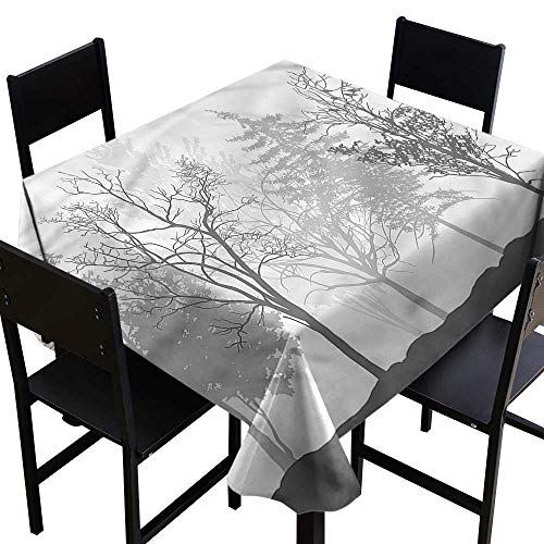 crabee Oblong tablecloths Nature,Bare Trees Silhouette Woods,W50 x L50 Square Tablecloth -