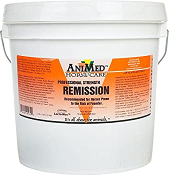 Remission Prevent Founder Antioxidants Amino Acids Relieves Pain Horse 10 Lb Tub 0