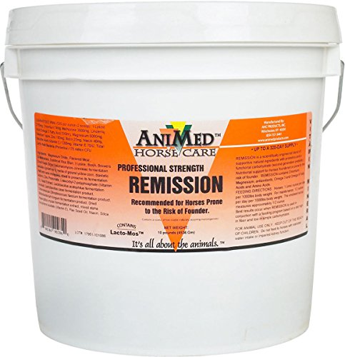 Remission Prevent Founder Antioxidants Amino Acids Relieves Pain Horse 10 lb tub (Best Supplement For Foundered Horse)