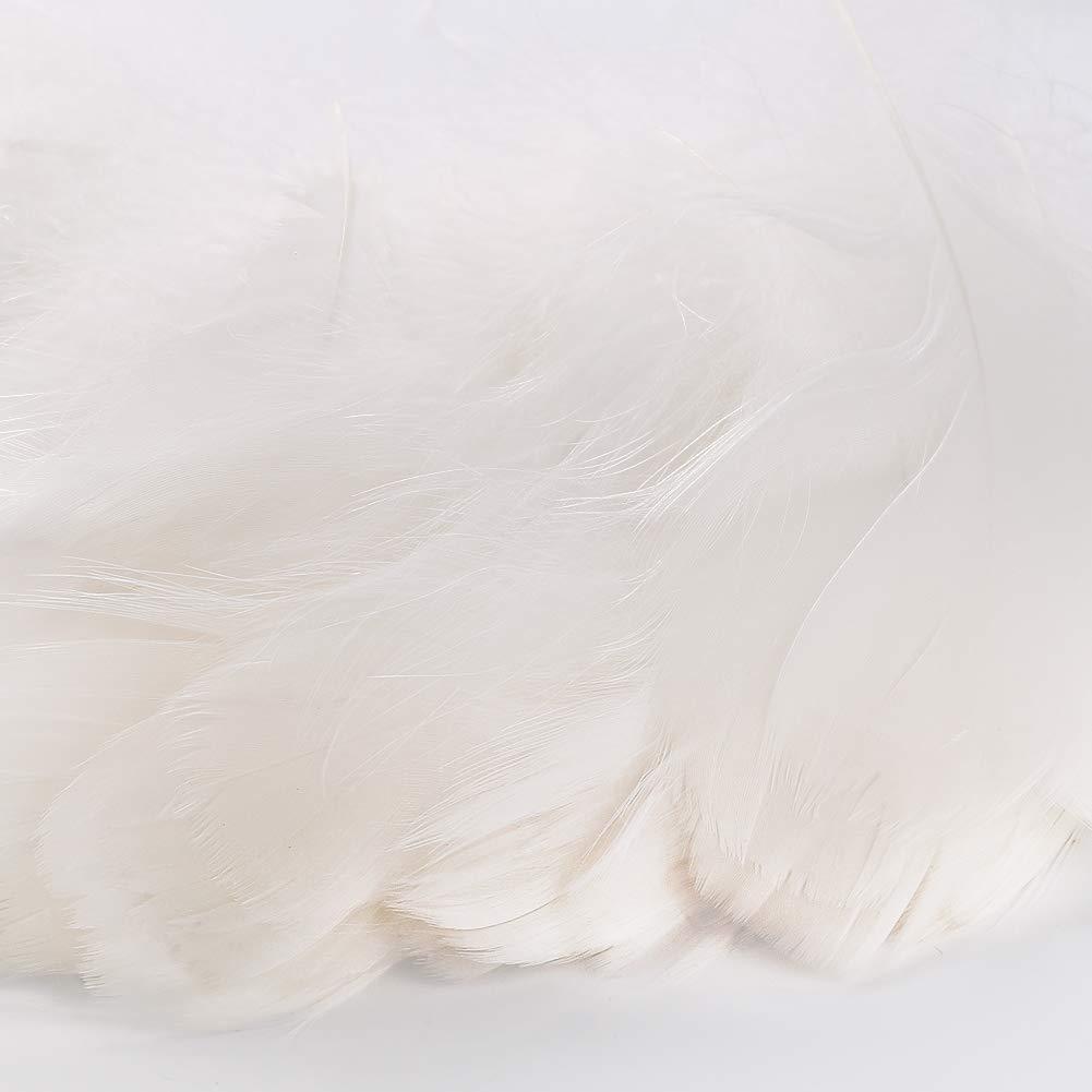 White BTNOW 800 Pieces White Feather Fantasy Ornament Create White Decoration
