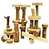 Constructive Playthings TEB-35 TREE Blocks - 36 Pc. Set - One-of-A-Kind, Grade: Kindergarten to 3, Age: 9.05'' Height, 9'' Wide, 6.5'' Length