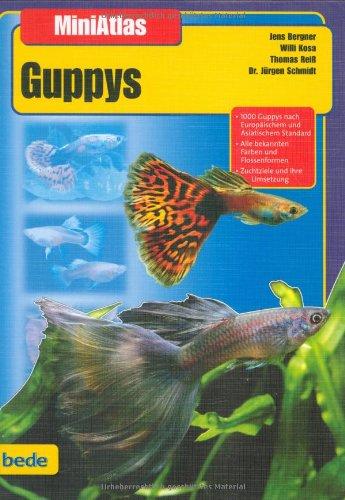 Guppys, MiniAtlas